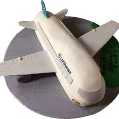 AIRPLANE CAKE